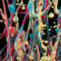 Sinestesia - tra colori e suoni