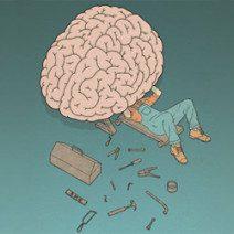 250_cervello-e-politica