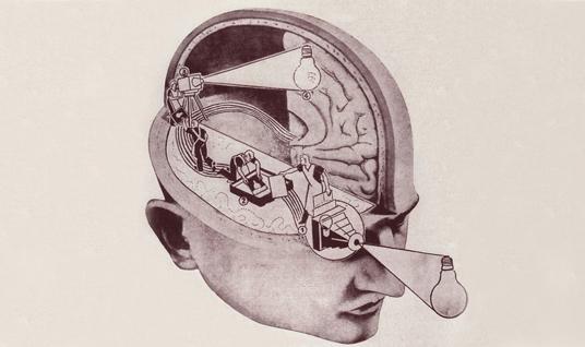 Bufale sul cervello