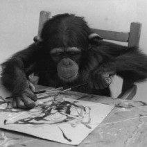 congo animali creativi