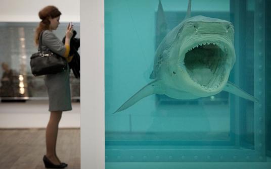 Lo squalo al mercato: l'arte contemporanea e il suo valore