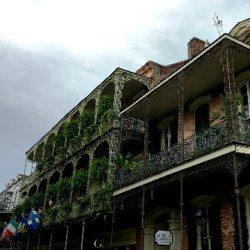 New Orleans 1 Nuovo e Utile