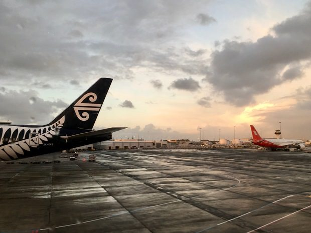 LA FELCE ARGENTATA E NEW ZEALAND AIRLINES