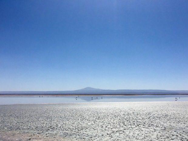 Laguna Chaxa, Cile