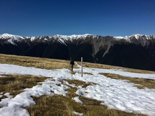 MOUNT ROBERT LOOP, NUOVA ZELANDA, ISOLA DEL SUD