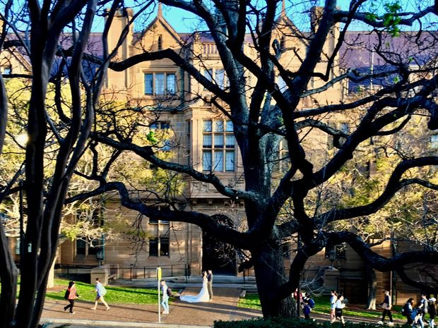 L'università di Sydney
