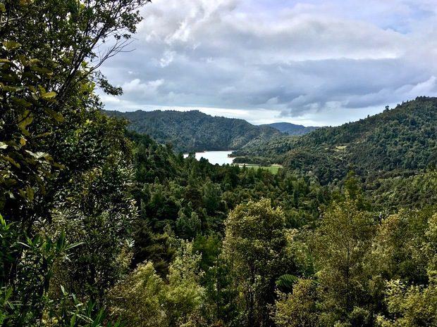 Hunua Ranges Regional Park, Auckland, Nuova Zelanda